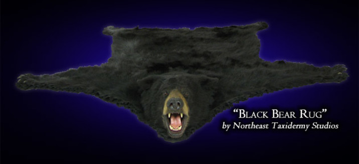 Black Bear Mounts