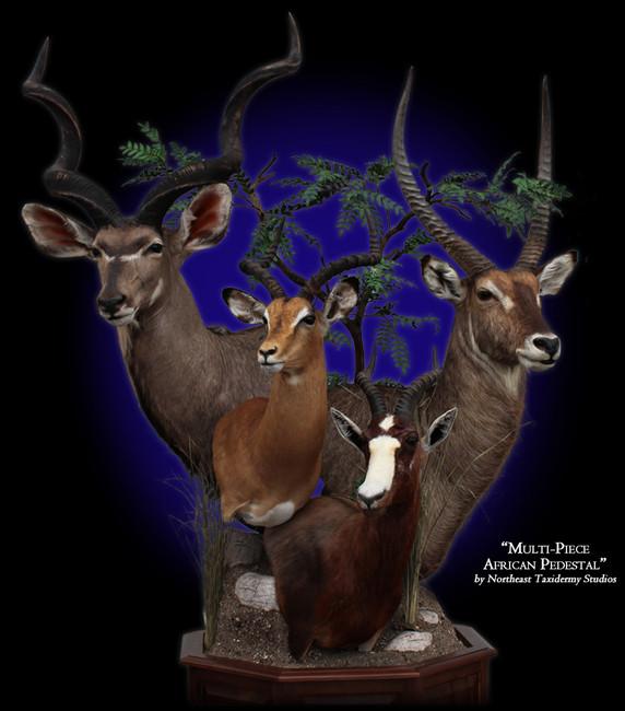 Kudu, Impala, Blesbok, Waterbuck Pedestal