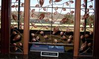 Twin River Casino - Ornamental