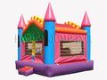 Princess Bounce House Hopper #2