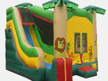 Jungle Theme 4-1 Combo Bounce House Hopper, Roo's Hopper Combos - Jacksonville Florida Bounce House Rentals