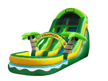 Coconut Palm Slide  19' Bounce House Waterslide WET or DRY, Roo's Wet or Dry Slides - Jacksonville Florida Bounce House Rentals