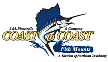 Branding a new division, and creating an eCommerce and Internet Marketing Experience for Coast-to-Coast Fish Mounts