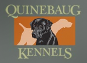 New England's Premiere Dog Care Facility For all Your Training & Boarding Needs