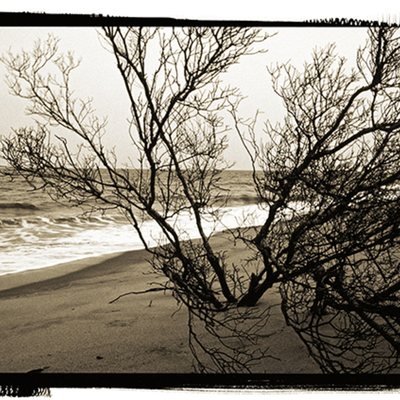 On The Ocean.  Size: matted 12x16 print photography