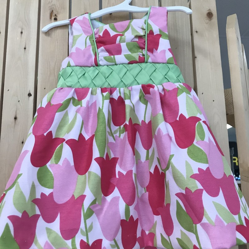 Beautiful Slvss Dress w/tulips. Great condition, size 6-9 months