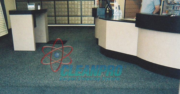 Cleanpro Carpet Cleaning System Franchise Opportunity